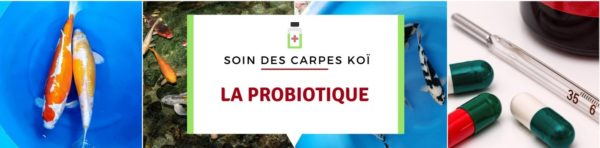 La probiotique par Jean-Luc RENCK /Biologiste et Ecrivain scientifique
