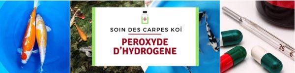 PEROXYDE D'HYDROGENE