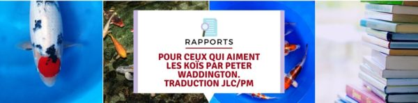 Pour ceux qui aiment les koïs par Peter Waddington. traduction JLC/PM