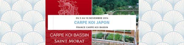 Carpe koi Japon du 3 au 10 novembre 2014