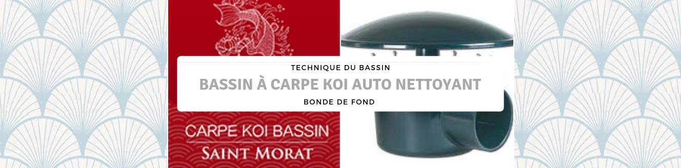 BASSIN À CARPE KOI AUTO NETTOYANT
