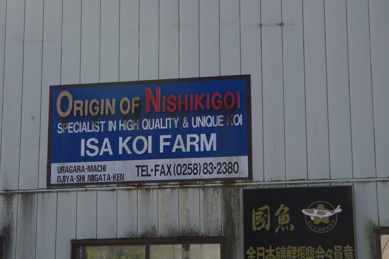 Isa Koi Farm