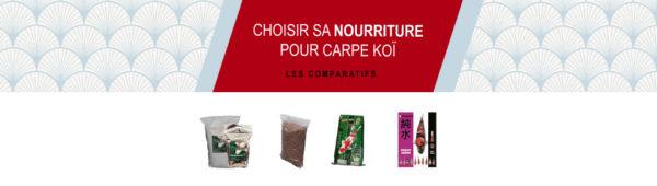 Comment choisir sa nourriture pour carpe koï ?