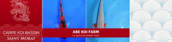 ABE KOI FARM