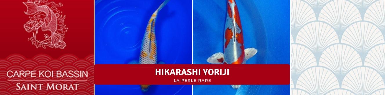 HIKARASHI YORIJI