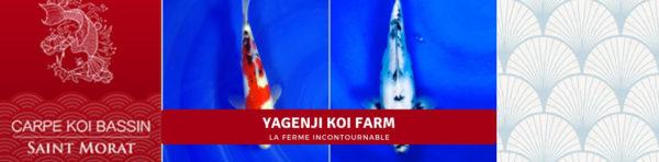 Yagenji koi farm