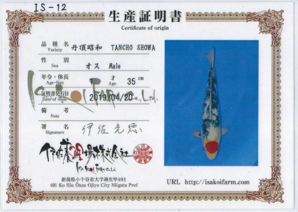 CERTIFICATJUMBO TOSAI TANCHO SHOWA