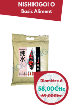 offres spéciales nishikigoi