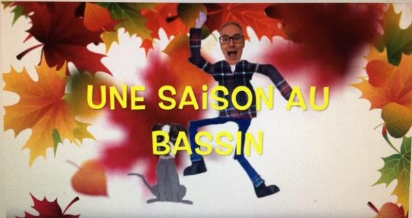 Une saison au bassin : l'été