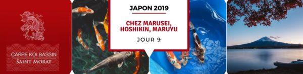 18/10 : Chez Marusei, Hoshikin, Maruyu