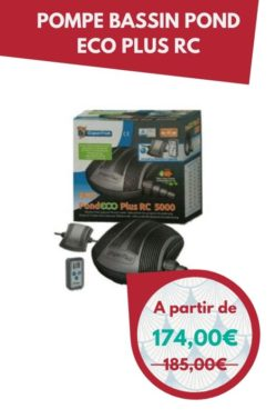 Pompe bassin pond eco plus RC