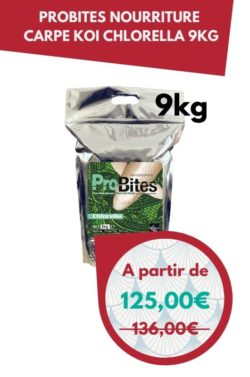 ProBites Nourriture Carpe Koi Chlorella 9kg