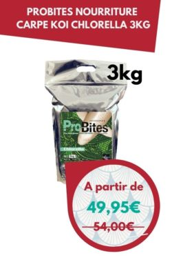 ProBites Nourriture Carpe Koi Chlorella 3kg